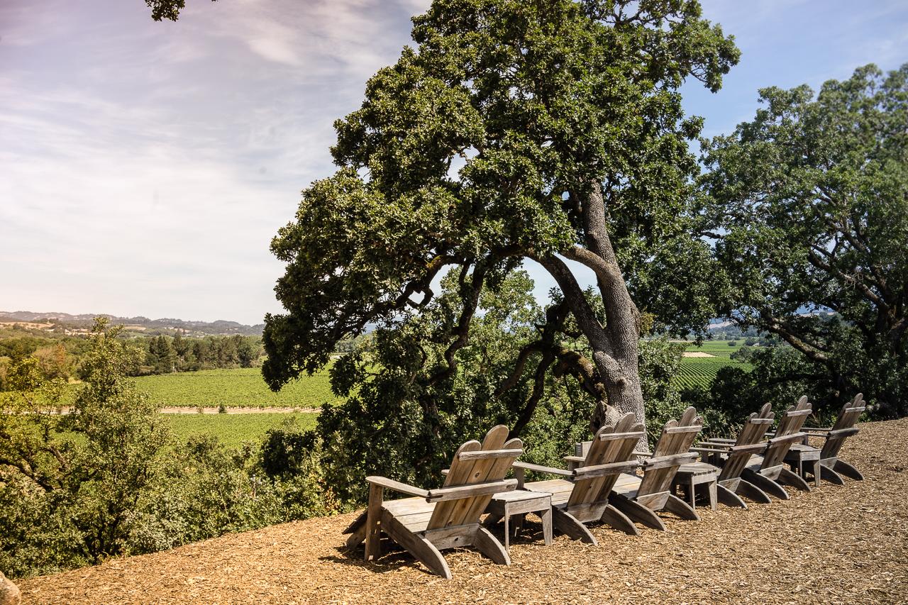 Copain Winery-11