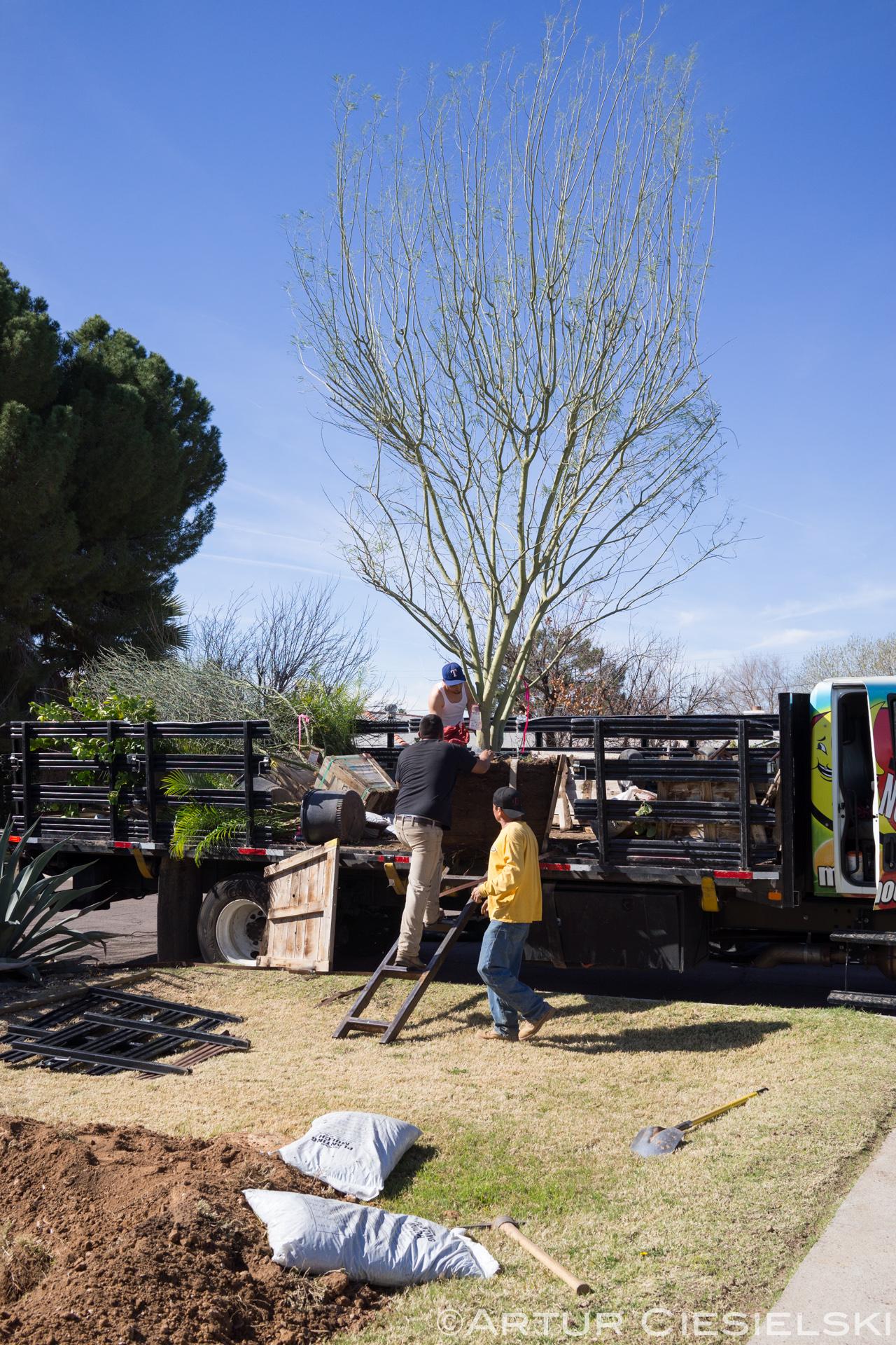 instal of the palo verde in phoenix-3