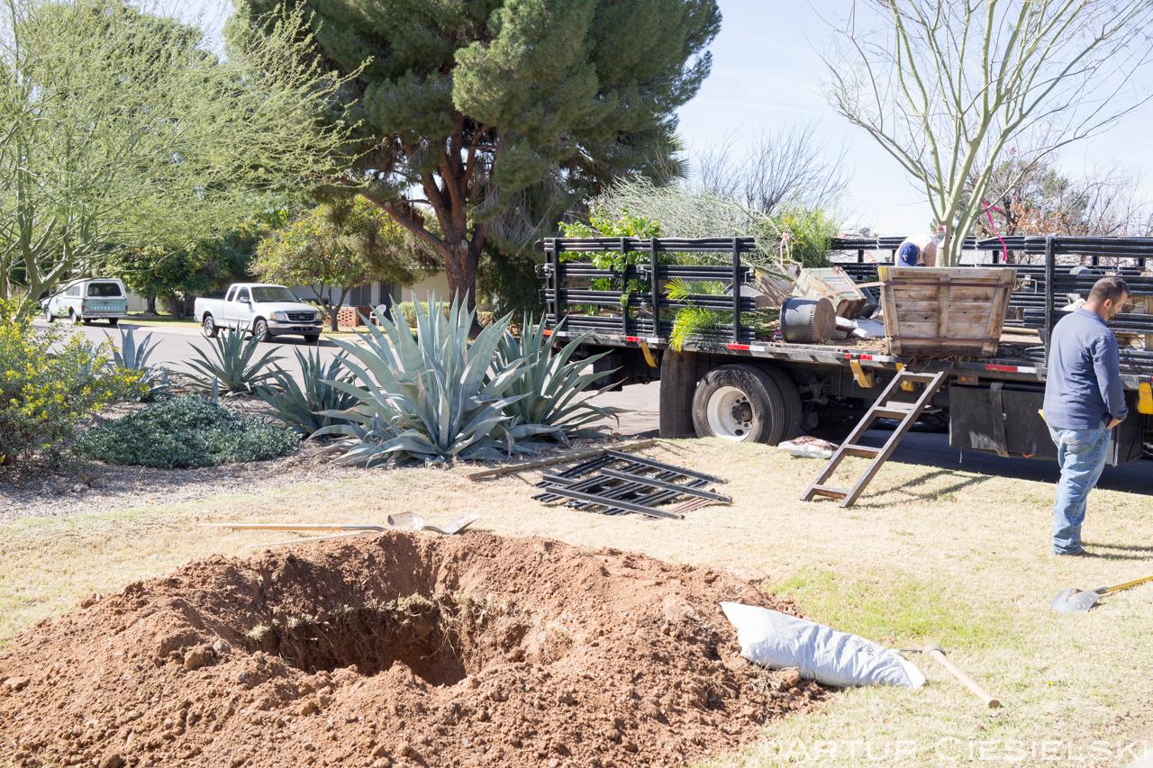 instal of the palo verde in phoenix