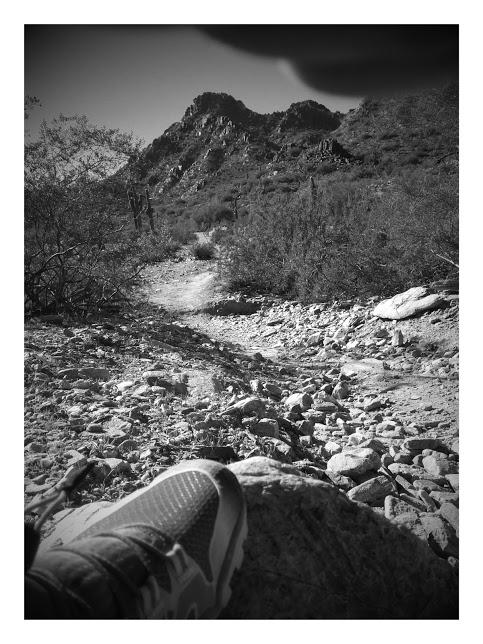 vivobarefoot trail freaks